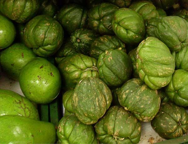 frutos de la guatila dispuestos en un mercado de Colombia